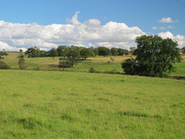 Farmland near Park Village (2)