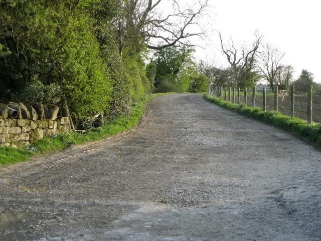 Bridleway near Sawley