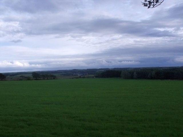 Jawcraig, pasture