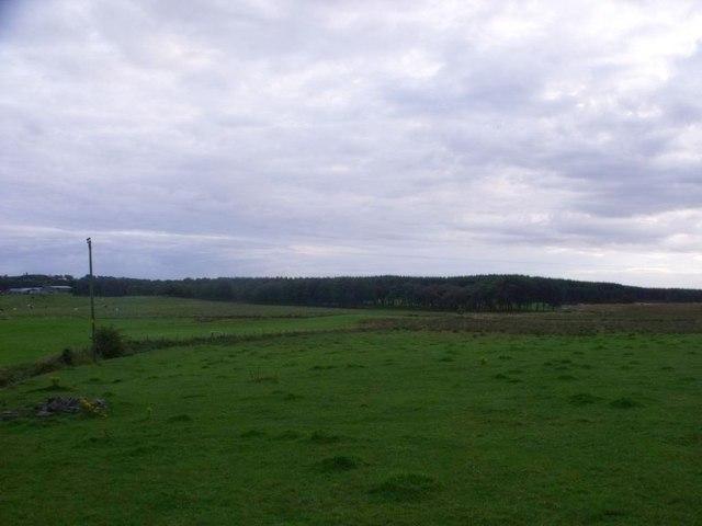 Wester Jaw, Avon flood plain