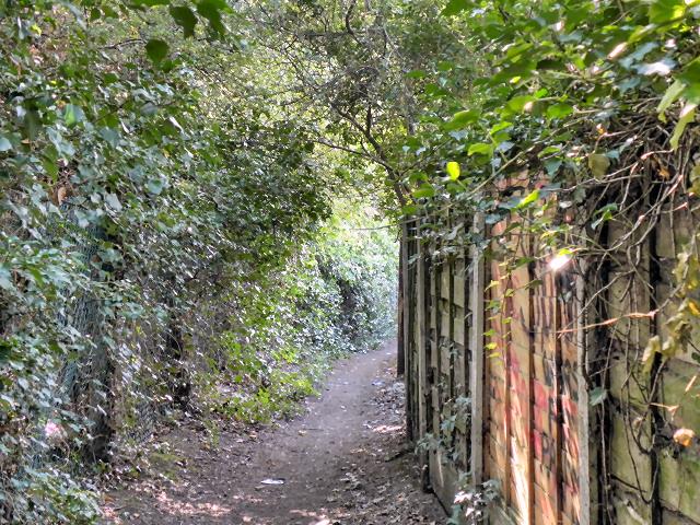 Lower Bredbury, Path Behind Sargent Road
