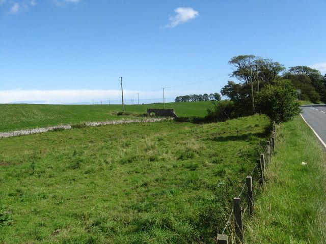 Grazing land near  Balchrystie