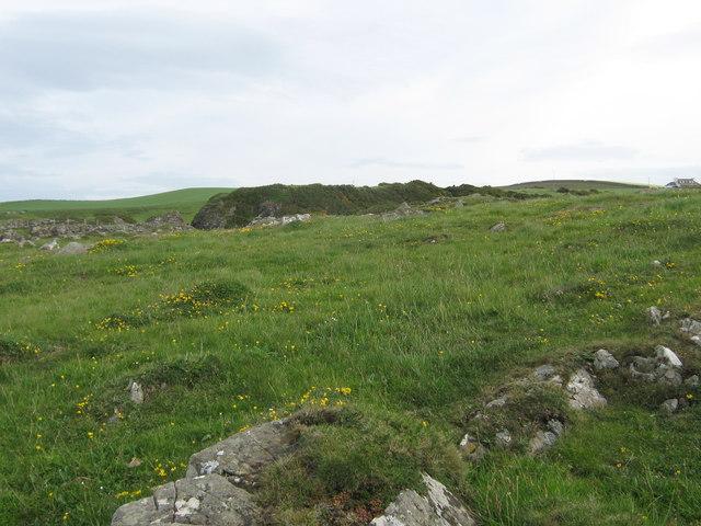 Looking inland towards Dally