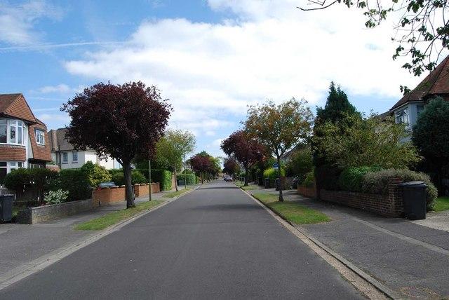 Vectis Road (2)