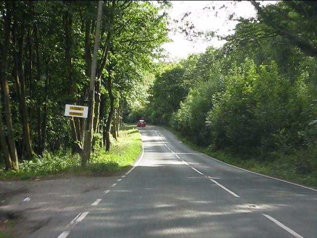 B4202 amid woodland