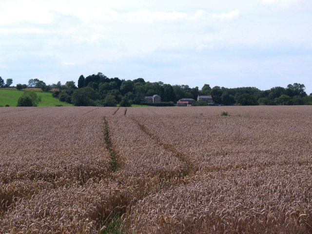 Arable field, Thirkleby