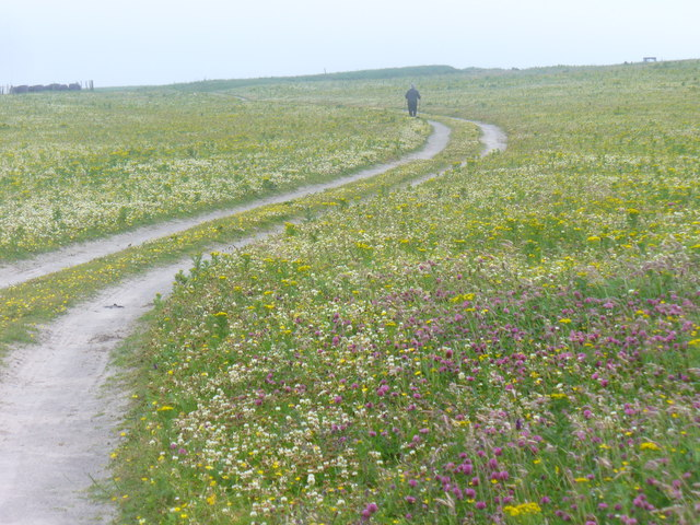 Machair Path at Sligeanach Kildonan