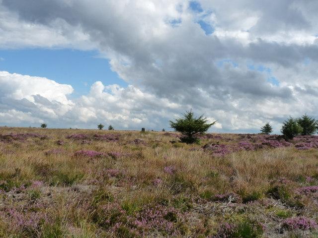 Balker Moor Trig Point