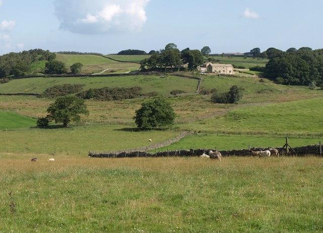 Towards Bank End Farm