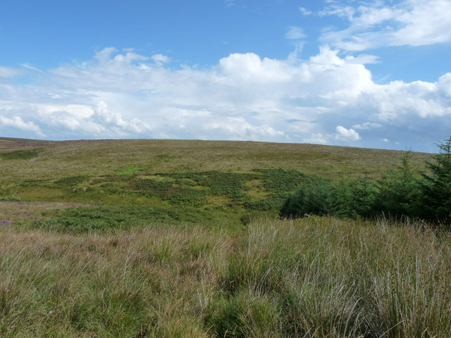 Balker Moor