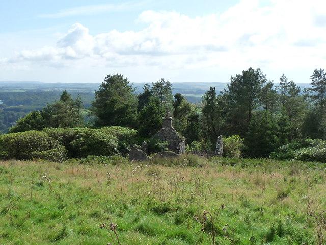 Rocky Wood Ruin