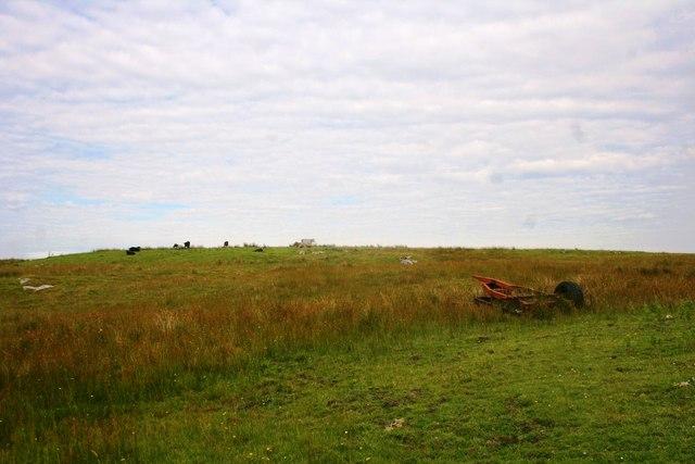 Upland Farming