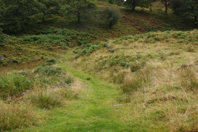 The path towards Tarn Hows