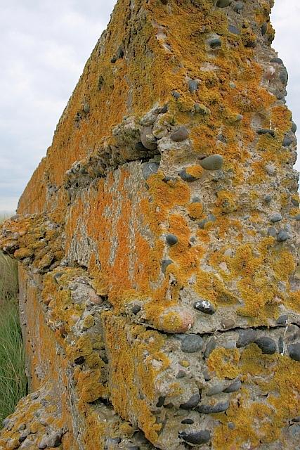 Close up of Ruined Wall