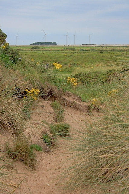 Haverigg Dunes