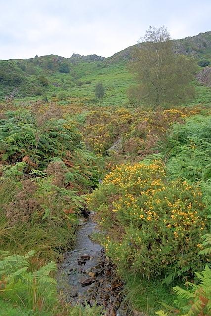 Cinderhill Beck
