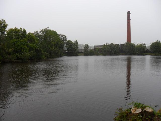 Mill Pond, Holmfirh