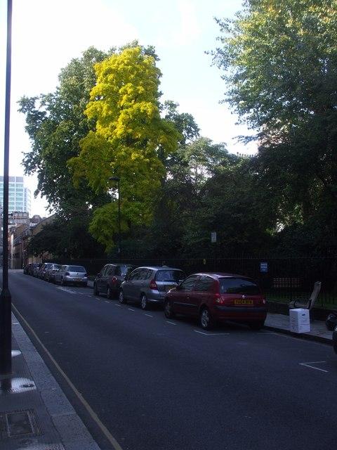 The gardens of Ridgmount Gdns, London
