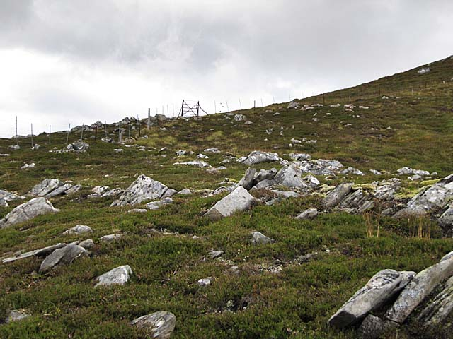 Fence and gate on Carn Dubh