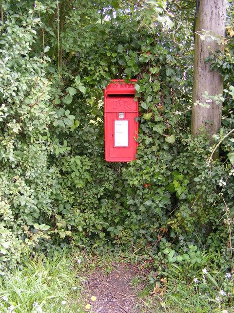 Dog Corner Postbox