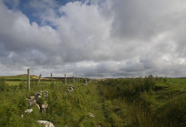 Track at Corsapol, Islay