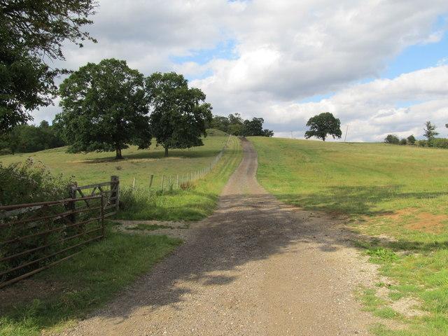 Holdenby-Macmillan Way