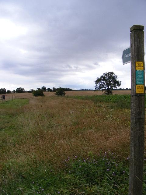 Footpath to Worlingworth Hall & New Road