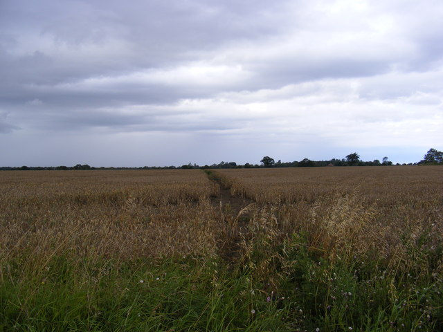 Footpath to Stanway Green & New Road
