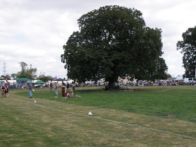 Arena trees at the Heckington Showground