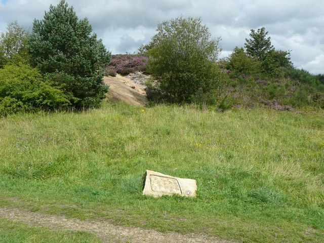 Sloping rock in Yorkgate Quarry, Guiseley