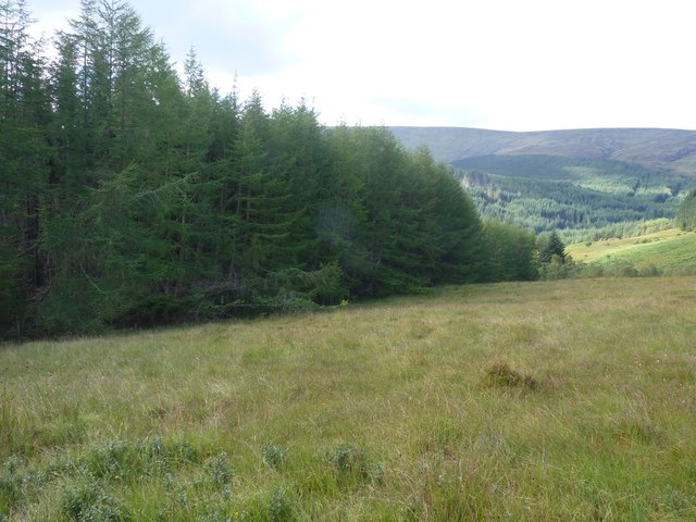 Looking into gap between forestry plantations below Meall Dubh