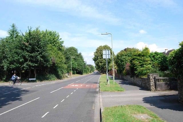 The Avenue (3)