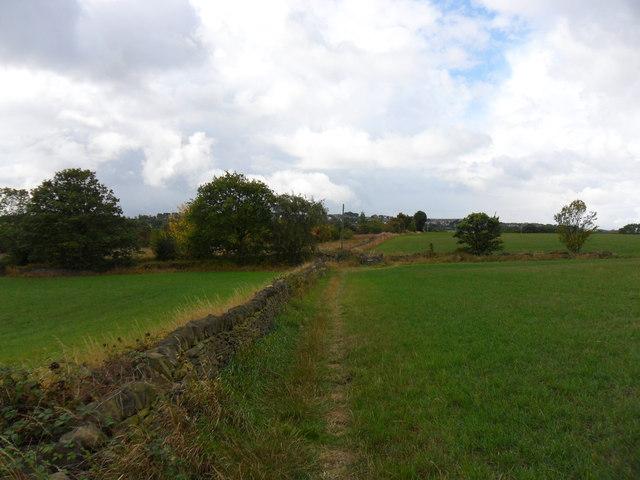 Field-edge footpath, Whin Moor