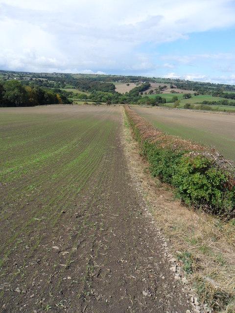Field-edge footpath, north of Kidfield House Farm