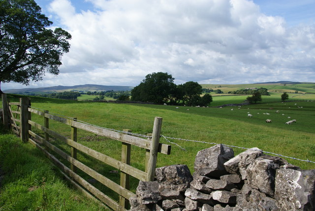 Sheep-grazing land near Eshton Moor