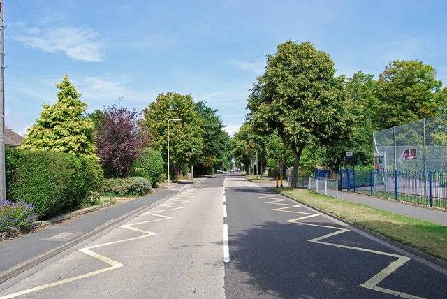 The Avenue (5)