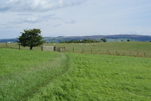 The Pennine Way near Harrows Hill