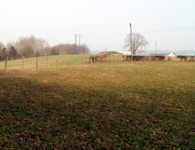Fences and a hedge in a Wrens Nest Farm field