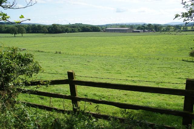 Fields near Gargrave