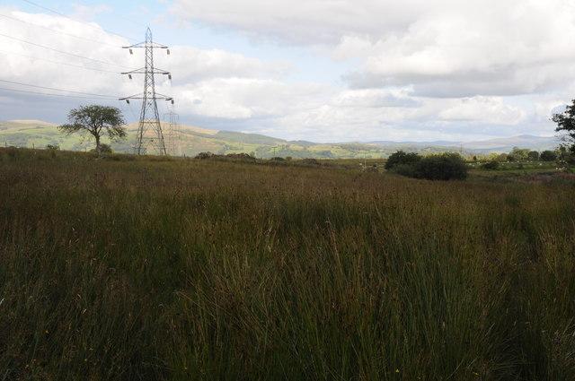 Rough grazing near Bont Newydd