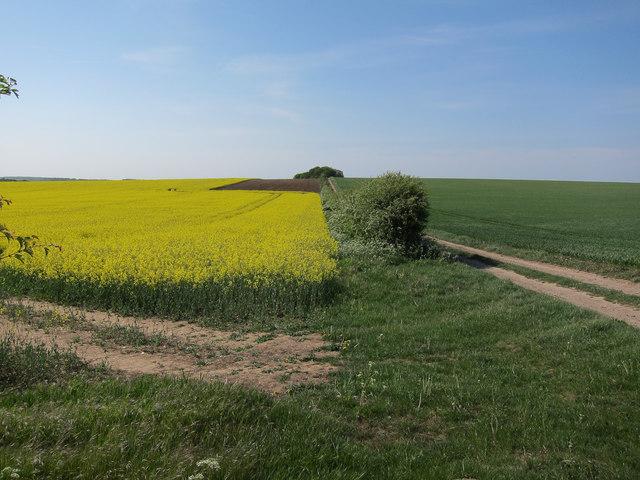 Track near Heath Farm