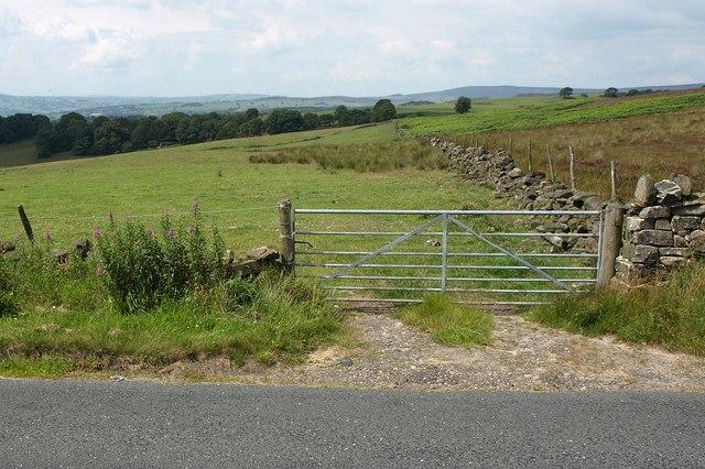 Askwith Moor