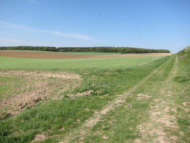 Harcamlow Way along the Roman Road
