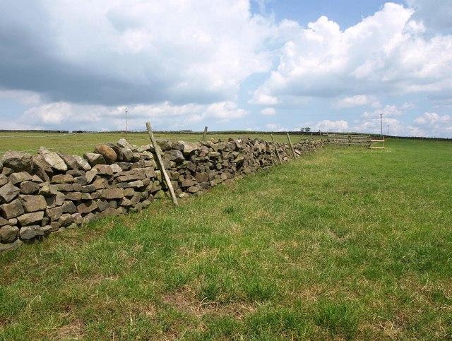 Wall, Weston Moor