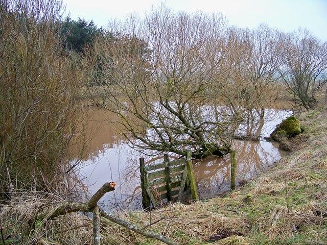 Former Mill Pond