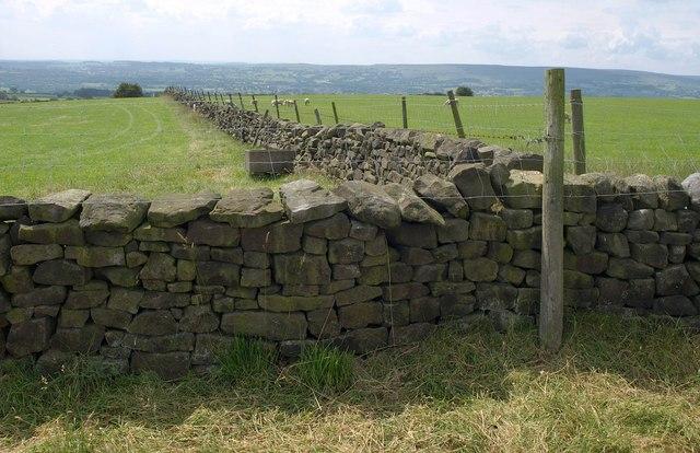 Dry stone walls, Weston Moor