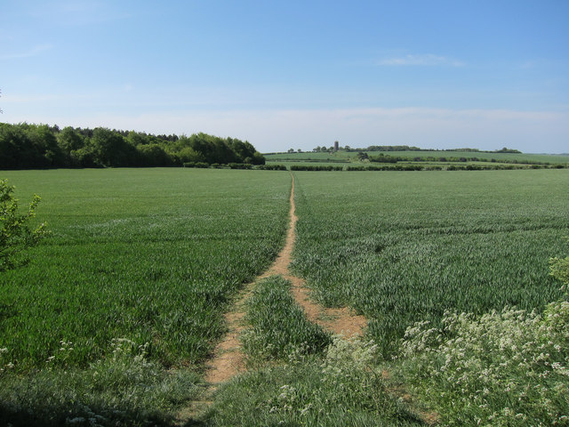 Footpath past Borley Wood