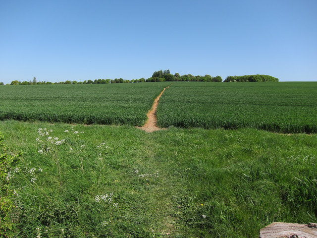 Footpath toward Yole Farm