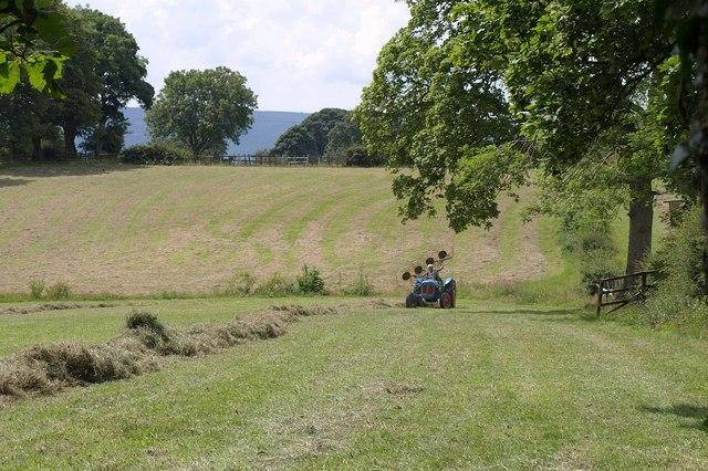 Grass turning, Yew Tree Farm
