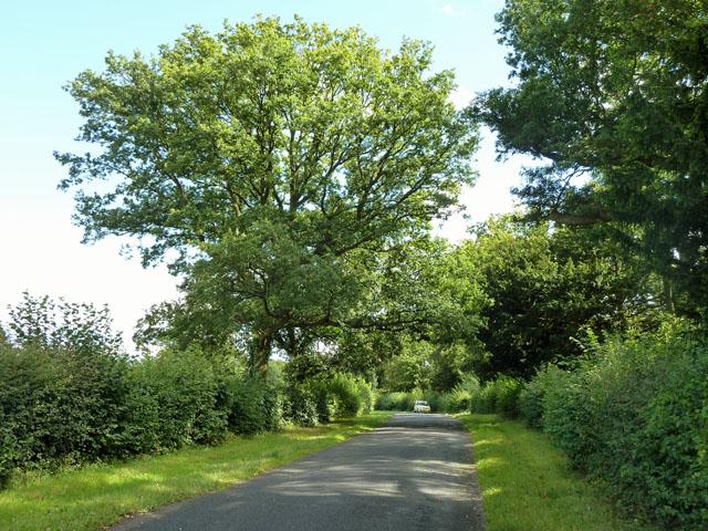 Chevening Road